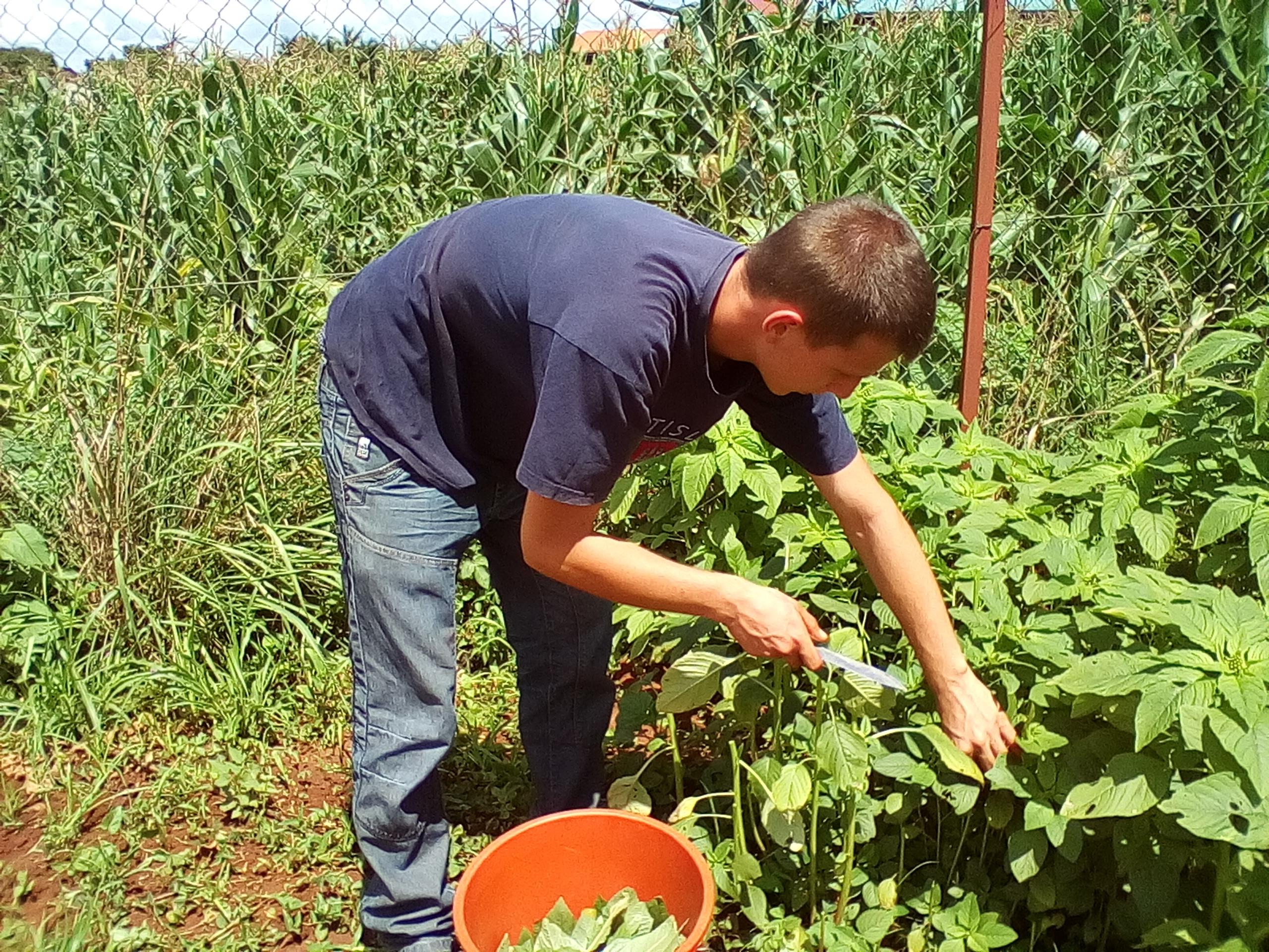 Der ehemalige Freiwillige Wieland bei der Arbeit am Gartenprojekt.