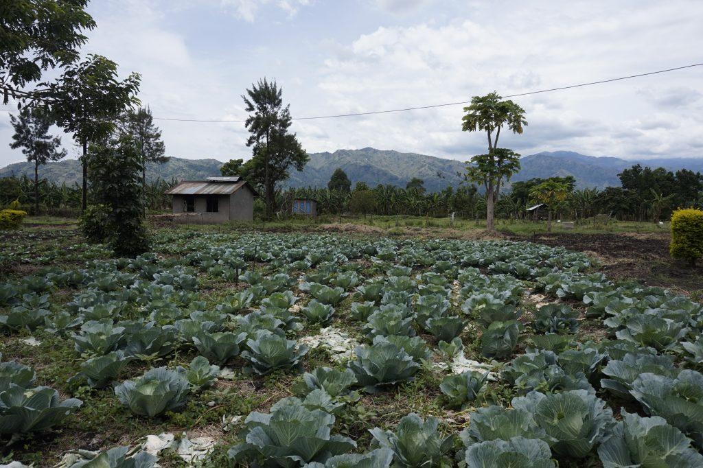 Das landwirtschaftliche Trainingsgelände für Schüler:innen